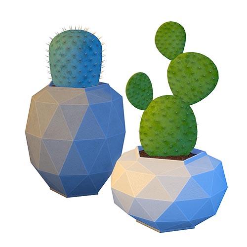 Mika Prickly Pear Cactus